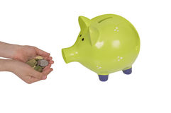 Green piggy bank and child hands isolated over white. Green piggy bank and child hands pretending to feed it with a pile of coins isolated over white Royalty Free Stock Images