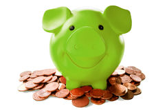 Green piggy bank among coins. Against white background Stock Images