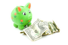 Green piggy bank with dollars Royalty Free Stock Photography