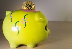 A green piggy bank with a golden bitcoin. Economical and financial concept involving cryptocoins, investment and savings Royalty Free Stock Photography
