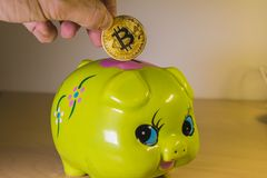 A green piggy bank with a golden bitcoin. Economical and financial concept involving cryptocoins, investment and savings Stock Photography