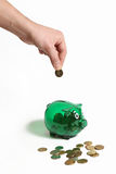 Green piggy bank. Male hand adding one more dollar in the piggy bank Stock Photos