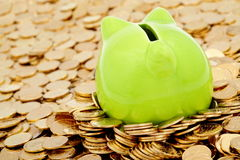 Green piggy bank and sea of  gold money. Business background Royalty Free Stock Photos