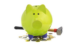 Green piggy bank standing on coins. Isolated over white Royalty Free Stock Photos