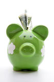 Green piggy bank with US dollar bills. On a white background Royalty Free Stock Images