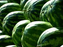 Green Piled Watermelon Stock Photos