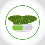 Green pill with ginkgo biloba  leafs . Stock Photo