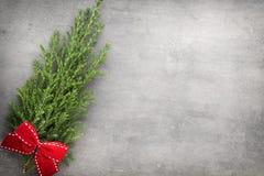 Green pine branch. Christmas decor background Stock Photos