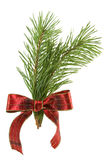 Green pine branch with red bow Stock Photography