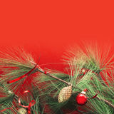 Green Pine branches with Christmas decorations Royalty Free Stock Image