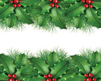 Green pine Christmas background image Royalty Free Stock Image