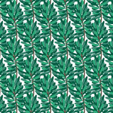 Green pine pattern on transparent background. Vector Royalty Free Stock Images