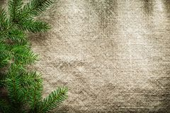 Green pine tree branches on sacking surface Royalty Free Stock Photos