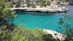 Green pine tree, turquoise water, people on seashore, idyllic summer holiday. UHD 4K stock footage