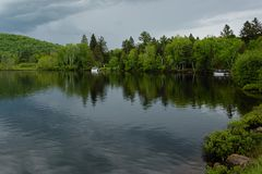 Green pine trees with beautiful reflections in the lake. Under overcast sky Stock Photography