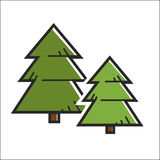 Green pine trees. Vector illustration of two green colored fir trees isolated on white Stock Photo