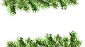 Green pine twigs for Christmas borders. Isolated on white background. Flat lay. Top view stock images