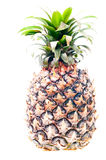 Green pineapple Royalty Free Stock Photography