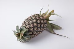 Green pineapple fruit Stock Photo