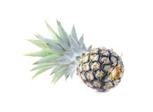 Green pineapple on isolated white background, unripe pineapple o Stock Image