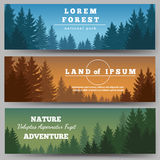 Green pines forest banners. Green pines forest horizontal banners with pine trees vector illustration Royalty Free Stock Image