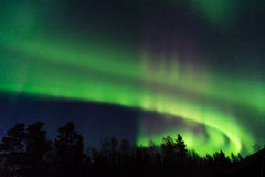 Green and pink aurora borealis on a starry sky Royalty Free Stock Photo