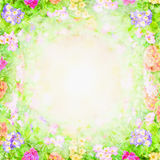 Green pink blurry floral background, flowers frame Royalty Free Stock Photo