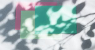 Green, pink empty card, sheet for writing. Layout for adding labels. Natural hard light, deep shadows. Hard Leaf Shadows.  royalty free stock image