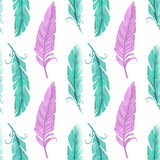 Green and pink  feather Royalty Free Stock Images