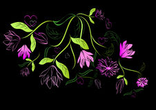 Green and pink floral design Stock Image