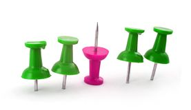 Green and Pink Pushpins Stock Photography