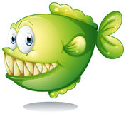 A green piranha Stock Photography