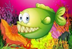A green piranha Stock Image
