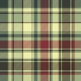 Green plaid diagonal seamless fabric texture Stock Photography