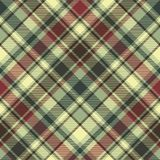 Green plaid diagonal seamless fabric texture Stock Image