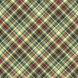 Green plaid diagonal seamless fabric texture Stock Photos