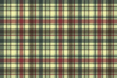 Green plaid diagonal seamless fabric texture Royalty Free Stock Photography