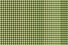 Green plaid gingham background Stock Photography