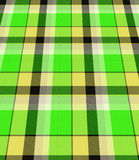 Green plaid material Royalty Free Stock Photos