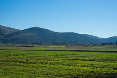 Green plains and mountains around Vitina, Peloponnese, Greece Royalty Free Stock Images