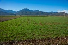 Green plains and mountains around Vitina, Peloponnese, Greece Stock Photos