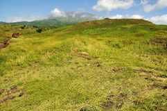 Green plains to mountain Stock Images