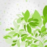 Plant music Royalty Free Stock Image