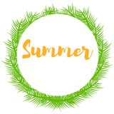 Green plant branches and place for text Summer Royalty Free Stock Image