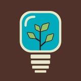 Green plant in bulb. Stock Stock Image