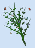 Green Plant With Butterflies stock photo