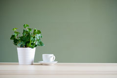 Green plant and coffee cup Stock Photo