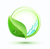 Green plant concept Royalty Free Stock Image