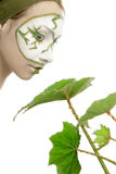 Green plant cosmetics skincare. Green plant cosmetics on woman face. Skincare with natural cosmetic. Close-up isolated on white royalty free stock images