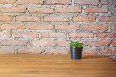 Green plant in the flowerpot on wood table with brick background.  Royalty Free Stock Photos